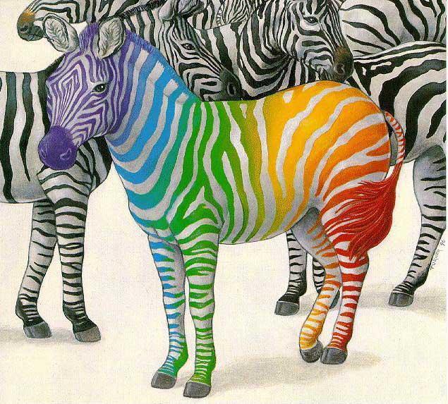Життя як зебра