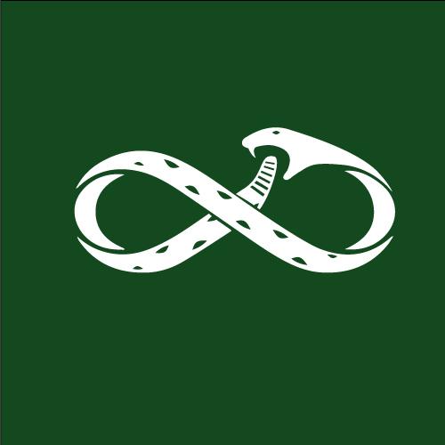 snake_infinity